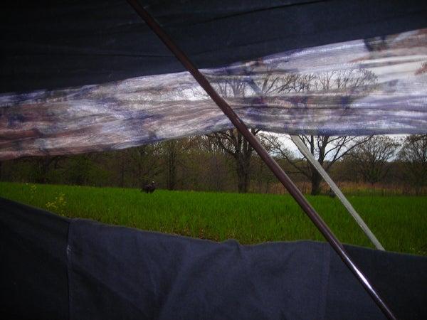 httpswww.outdoorlife.comsitesoutdoorlife.comfilesimport2013images20110514_Megan_Kts_072_0.jpg