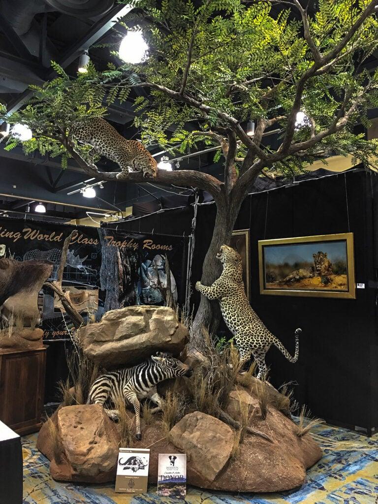 leopard mount