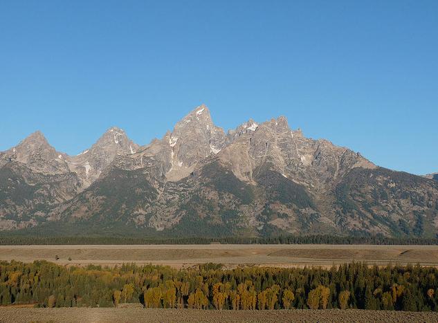 Wyoming Backcountry Elk
