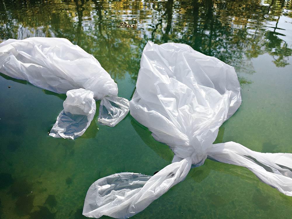 garbage bag swan decoys