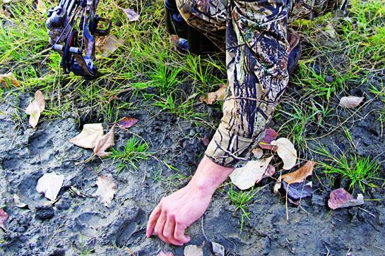 Hunting Tips: How to Track Deer in Open Country