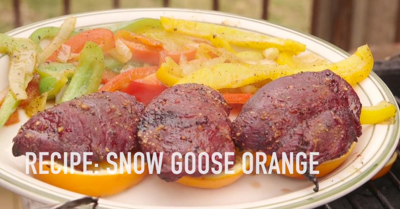 snow goose recipe