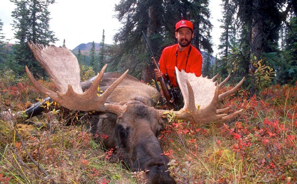 bull moose hunter