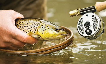 Fly Fishing: 3 Streamers for Small Streams