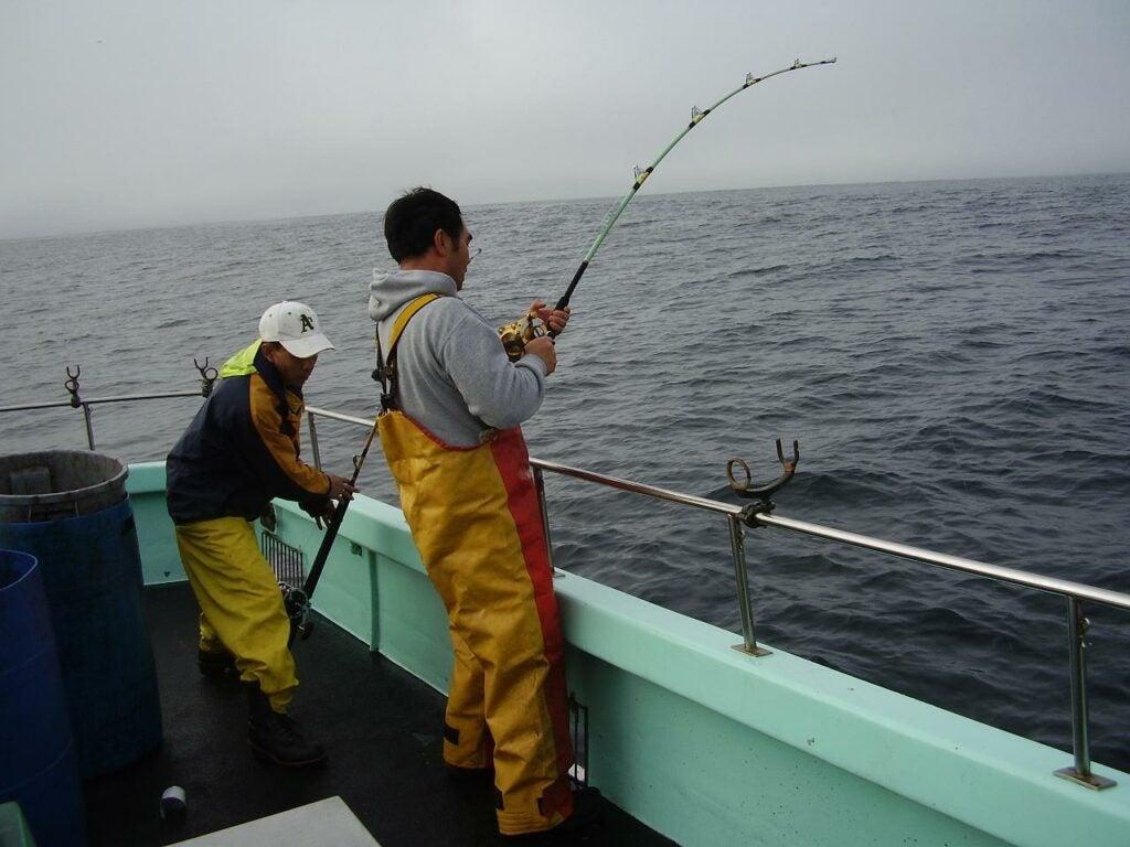 Battling a squid