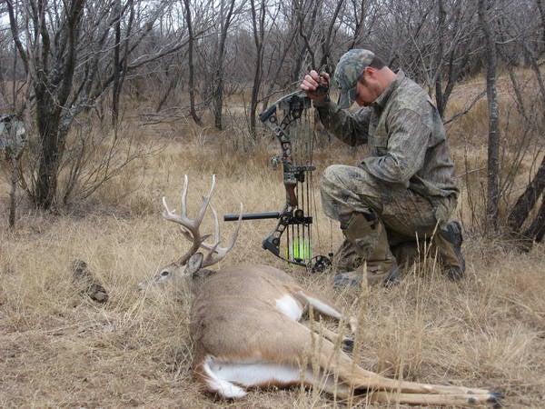 A Backyard Buck