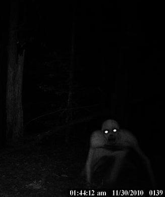 Halloween Photos: 30 Freaky Trail Camera Shots