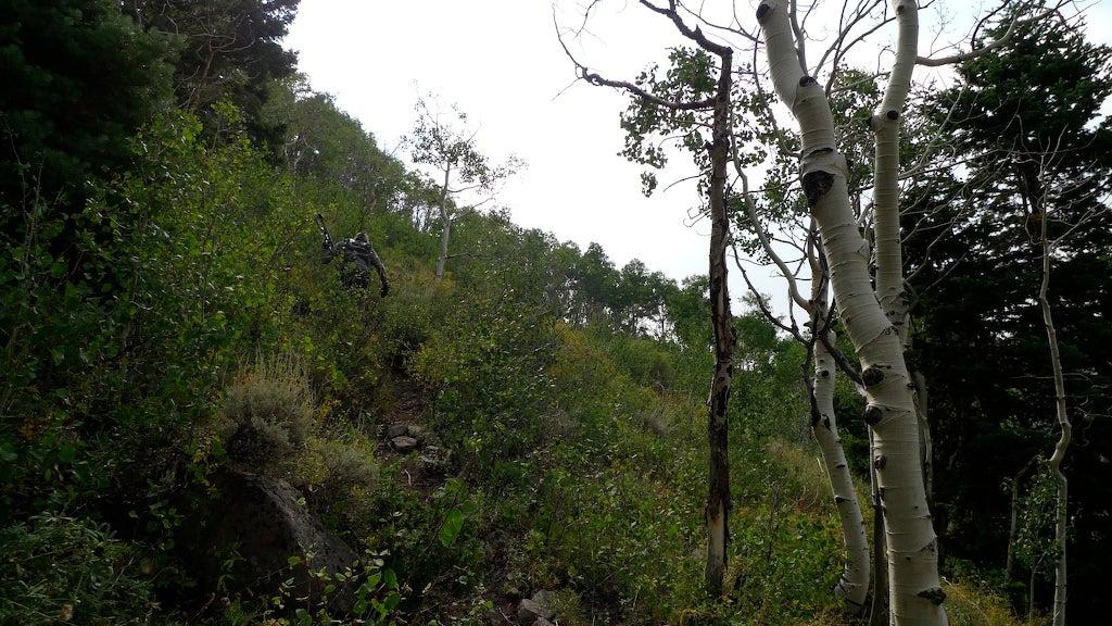 httpswww.outdoorlife.comsitesoutdoorlife.comfilesimport2014importImage2009photo7L1000463.jpg
