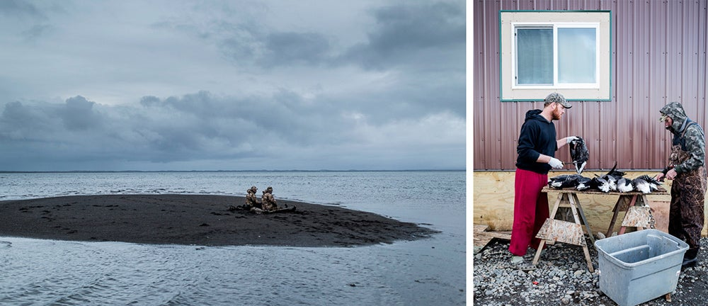Waterfowl Hunting in Alaska