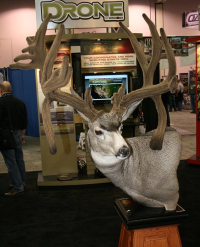 The Story Behind the New World Record Mule Deer