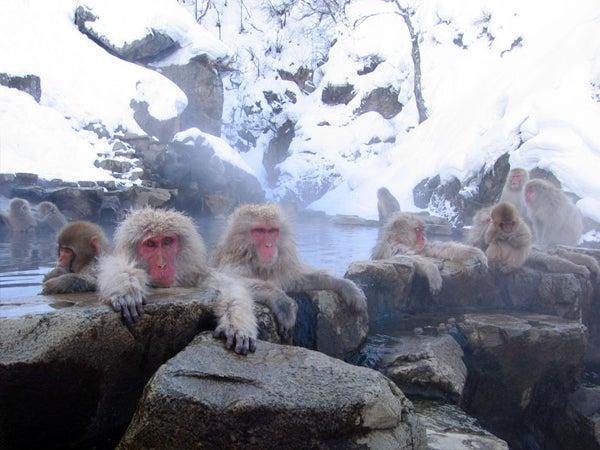 httpswww.outdoorlife.comsitesoutdoorlife.comfilesimport2014importImage2010photo100132157921_14.jpg
