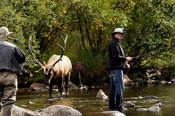 httpswww.outdoorlife.comsitesoutdoorlife.comfilesimport2014importImage2011photo1001321579elkfishing_03.jpg