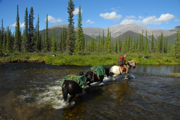 httpswww.outdoorlife.comsitesoutdoorlife.comfilesimport2014importImage2010photo1001321579Yukon24.jpg