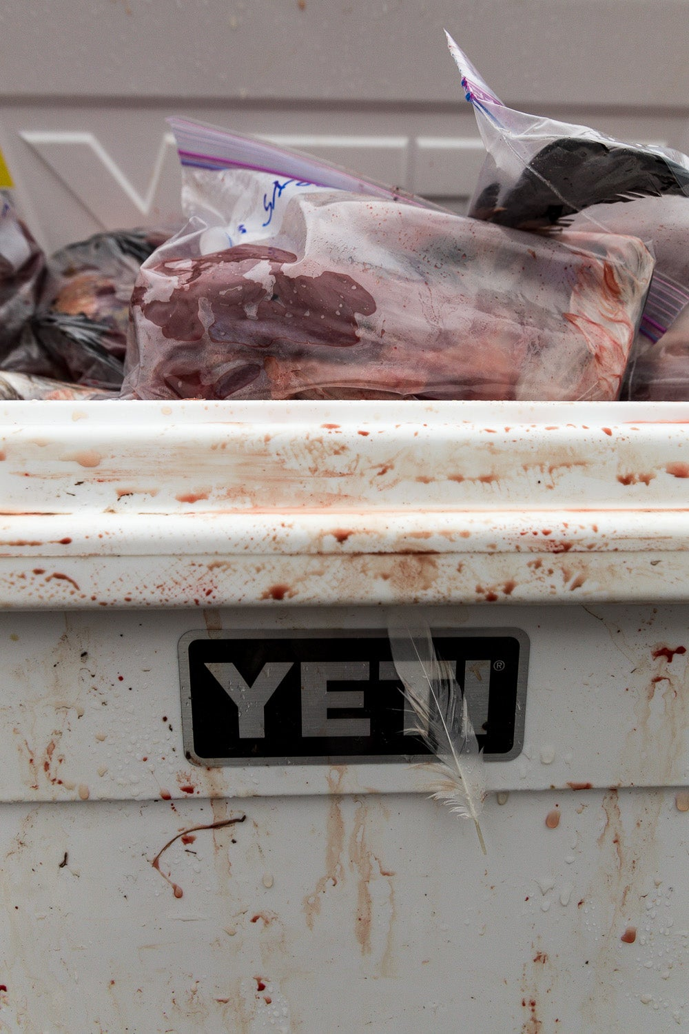 Tips for Cooling and Temporary Storage of Wild Game Meat