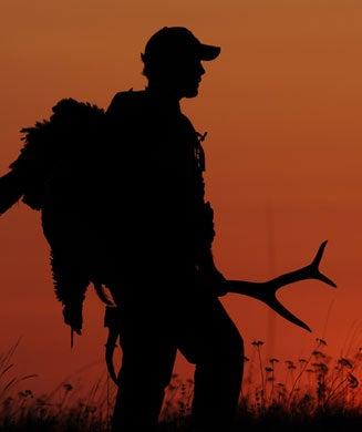 Elk-Country Gobblers