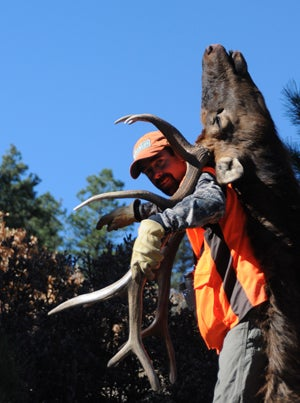 Record Quest 2011: The Year Of The Elk