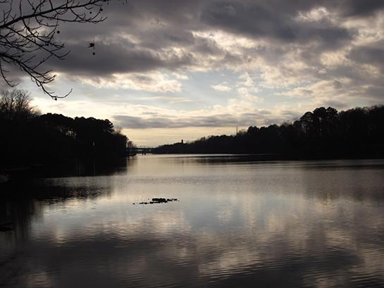 Public Land: Hunting and Fishing in Alabama