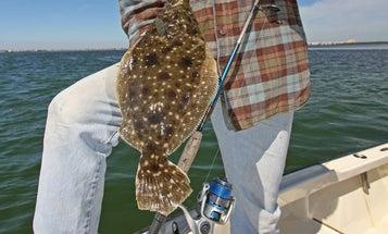 Saltwater Fishing Tips: Tactics for Flats Drifting