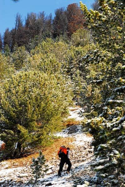httpswww.outdoorlife.comsitesoutdoorlife.comfilesimport2013images201011Goat_13_copy_0.jpg