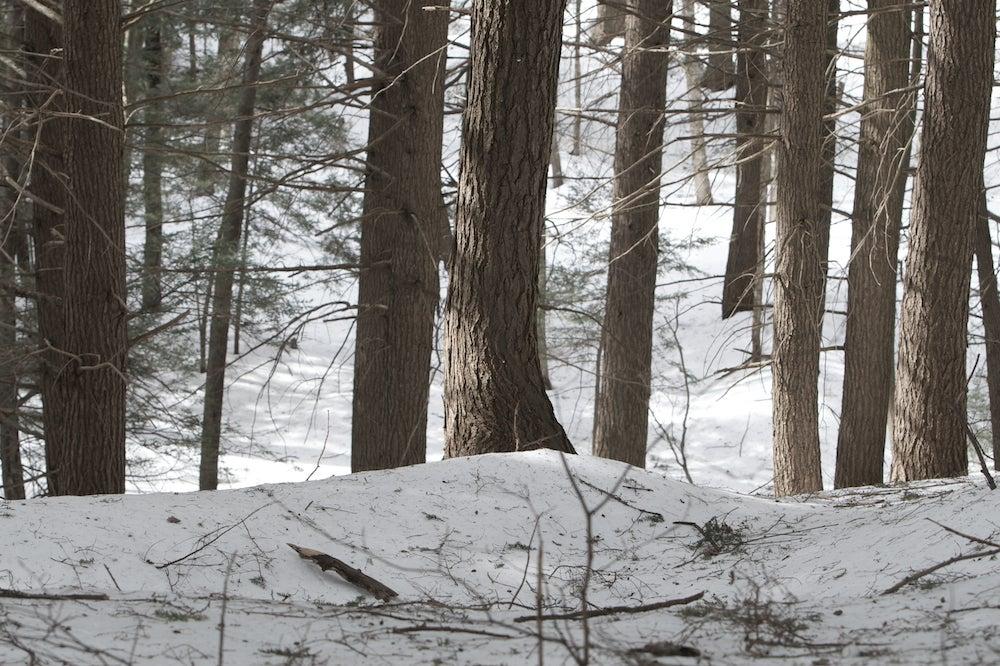httpswww.outdoorlife.comsitesoutdoorlife.comfilesimport2013images20110205_4.jpg