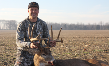 How to Hunt a Hot-Then-Cold Whitetail Rut