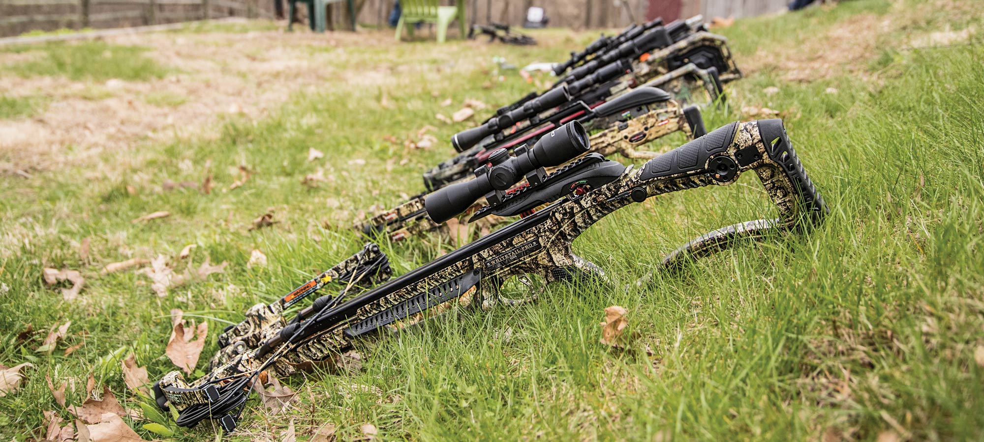 crossbows in grass