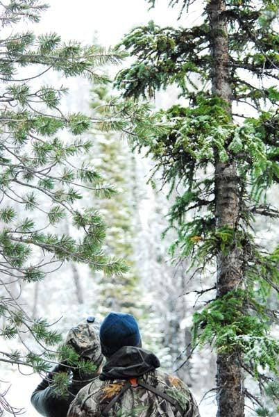 httpswww.outdoorlife.comsitesoutdoorlife.comfilesimport2013images201011Goat_5_copy_0.jpg