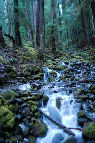 httpswww.outdoorlife.comsitesoutdoorlife.comfilesimport2013images201101slide61_0.jpg