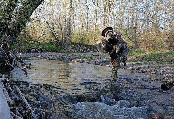 httpswww.outdoorlife.comsitesoutdoorlife.comfilesimport2014importBlogPostembedturkey3.jpg