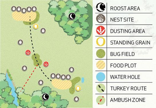 httpswww.outdoorlife.comsitesoutdoorlife.comfilesimport2014importBlogPostembedturkeymap_0.jpg
