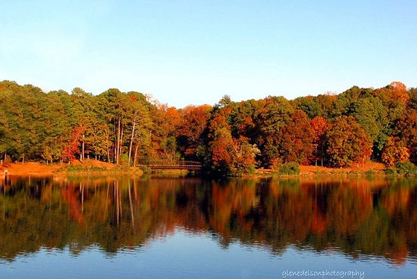 httpswww.outdoorlife.comsitesoutdoorlife.comfilesimport2014importImage2010photo10013215796_20.jpg
