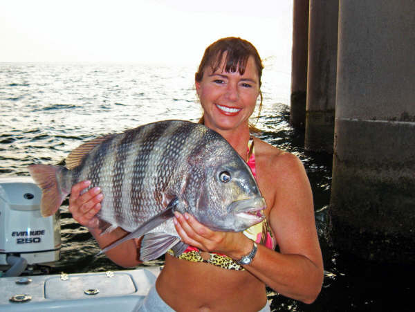 httpswww.outdoorlife.comsitesoutdoorlife.comfilesimport2014importImage2009photo7Dr._Julie_with_a_big_Sheepshead_0.jpg