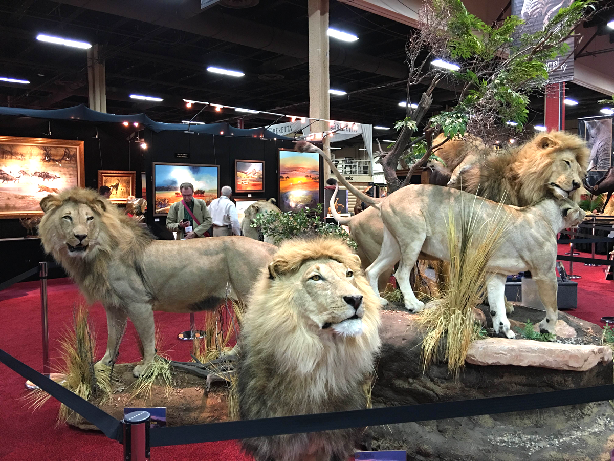 Trophy Hunting and Conservation in 2016: Recent Threats and What We Can Do About Them