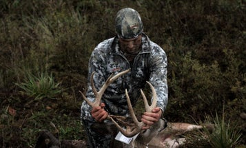The Secret to Deer Hunting Success: What I Learned from Interviewing 30 Whitetail Experts