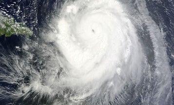 Hurricane Survival Guide
