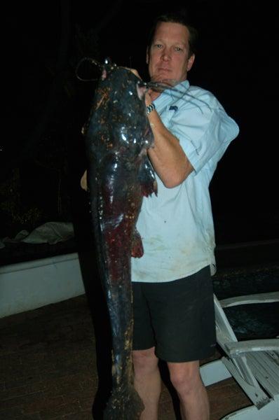 httpswww.outdoorlife.comsitesoutdoorlife.comfilesimport2013images2010123_sharptooth_catfish_-_36367_0.jpg