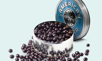 The Egg Takers: Harvesting America's Paddlefish Caviar