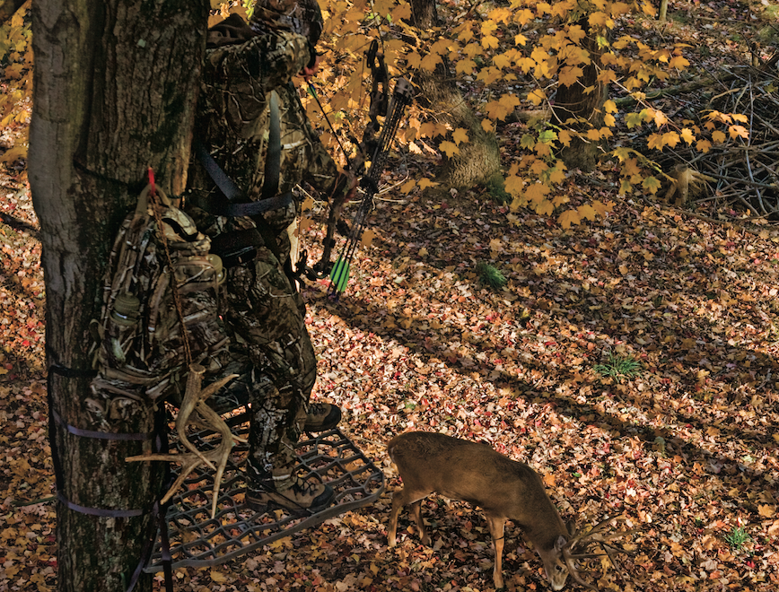 Bowhunting Tips: 3 Ways to Avoid Missing at the Moment of Truth
