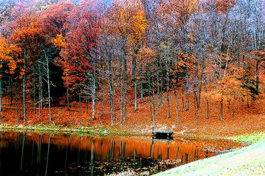 Public Land: Hunting and Fishing in Ohio
