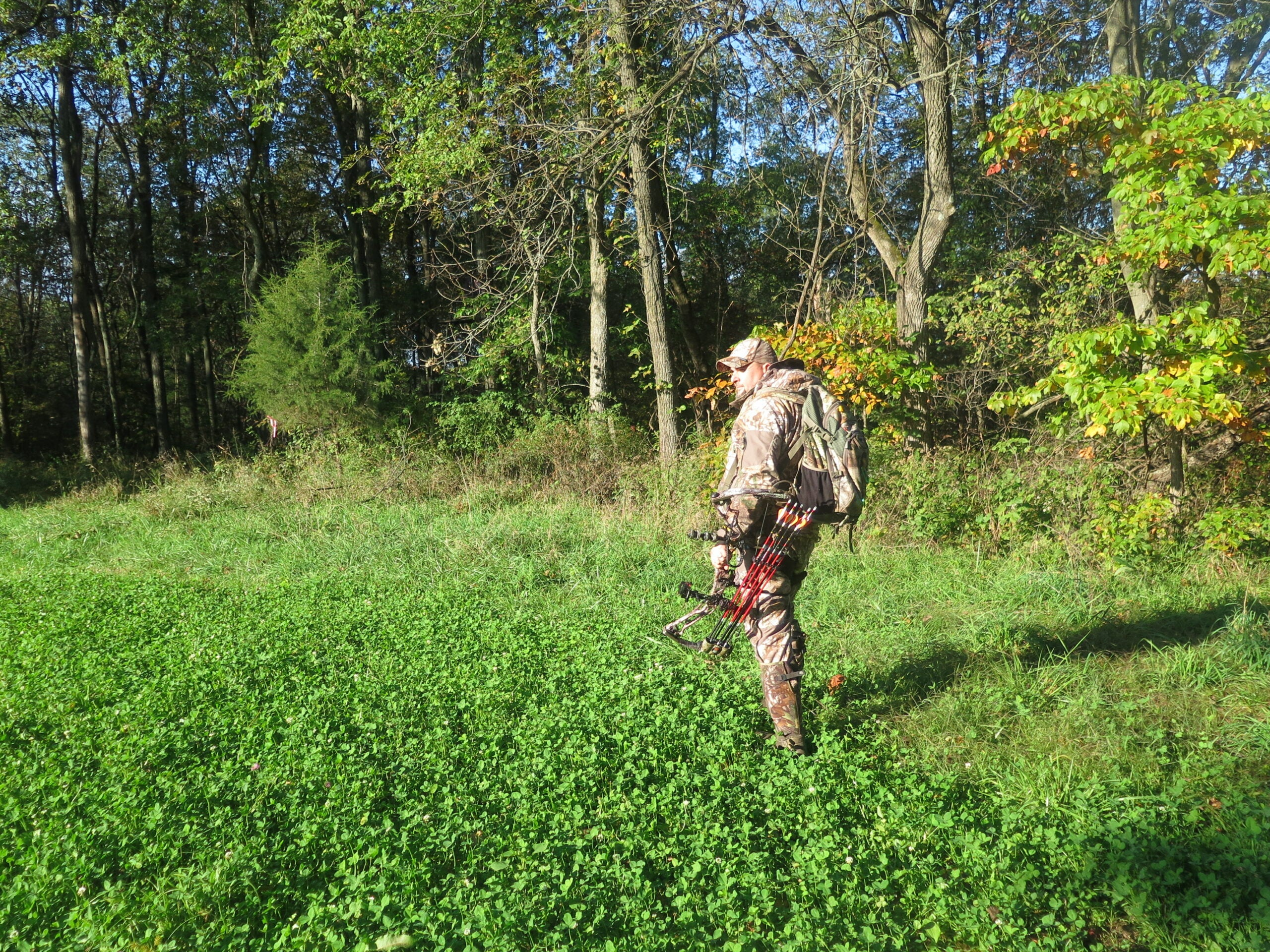 Bowhunting Tactics: Why Field Edges are Perfect for an Opening-Day Ambush