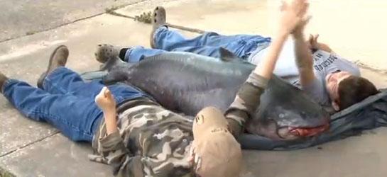 Kid Lands 114-Pound Louisiana State Record Catfish