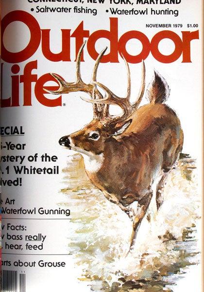 httpswww.outdoorlife.comsitesoutdoorlife.comfilesimport2013images2011071979_Nov_0.jpg