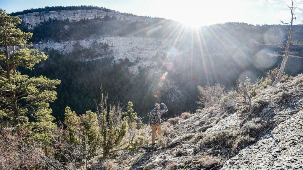 hunter scouting for spanish ibex
