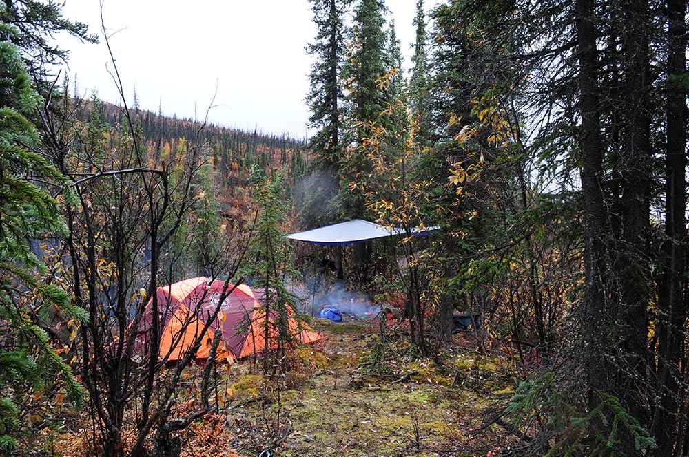 Hunting campsite in woods