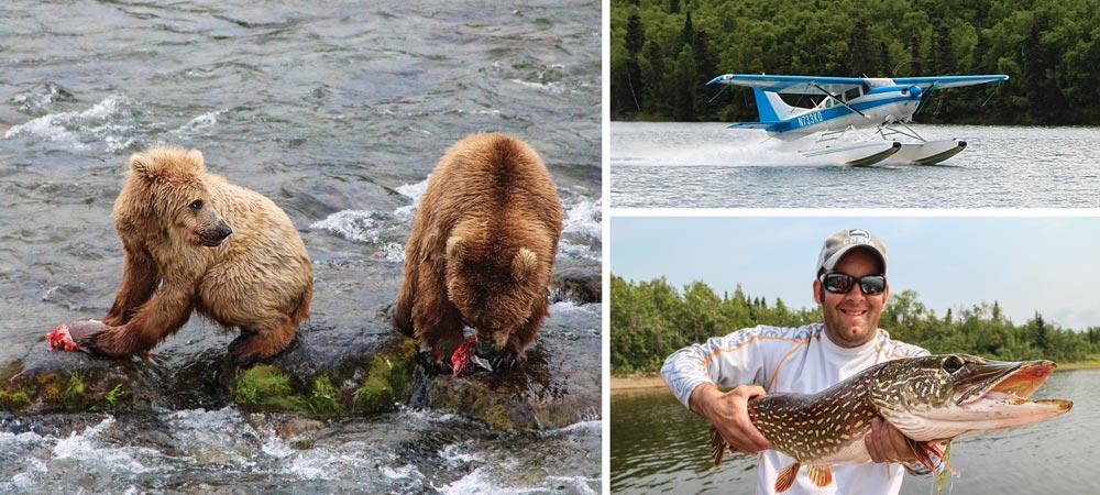 brown bears, pike, cessna