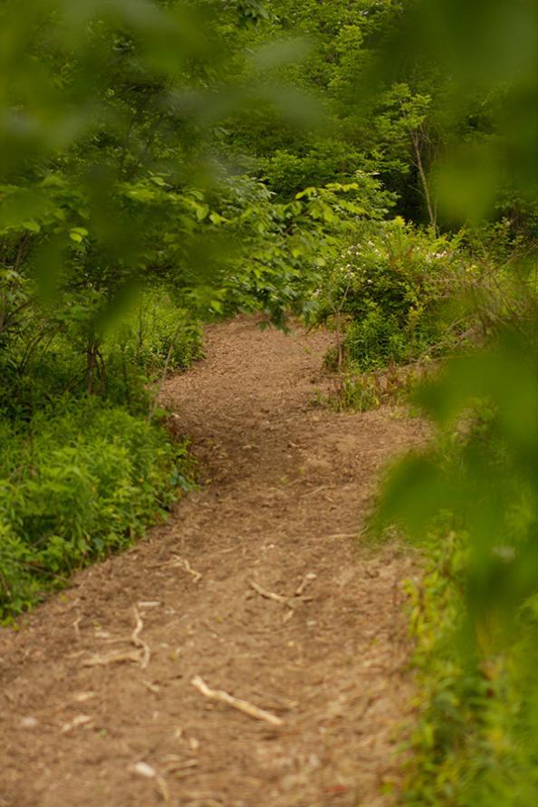 httpswww.outdoorlife.comsitesoutdoorlife.comfilesimport2014importBlogPostembedplot2.jpg