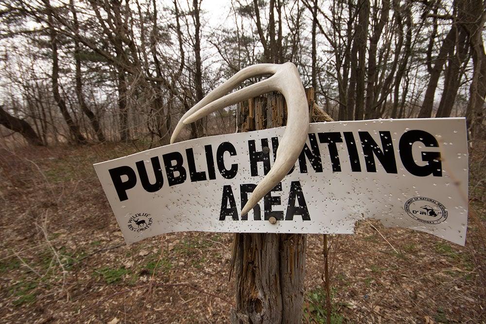 public lands deer hunting