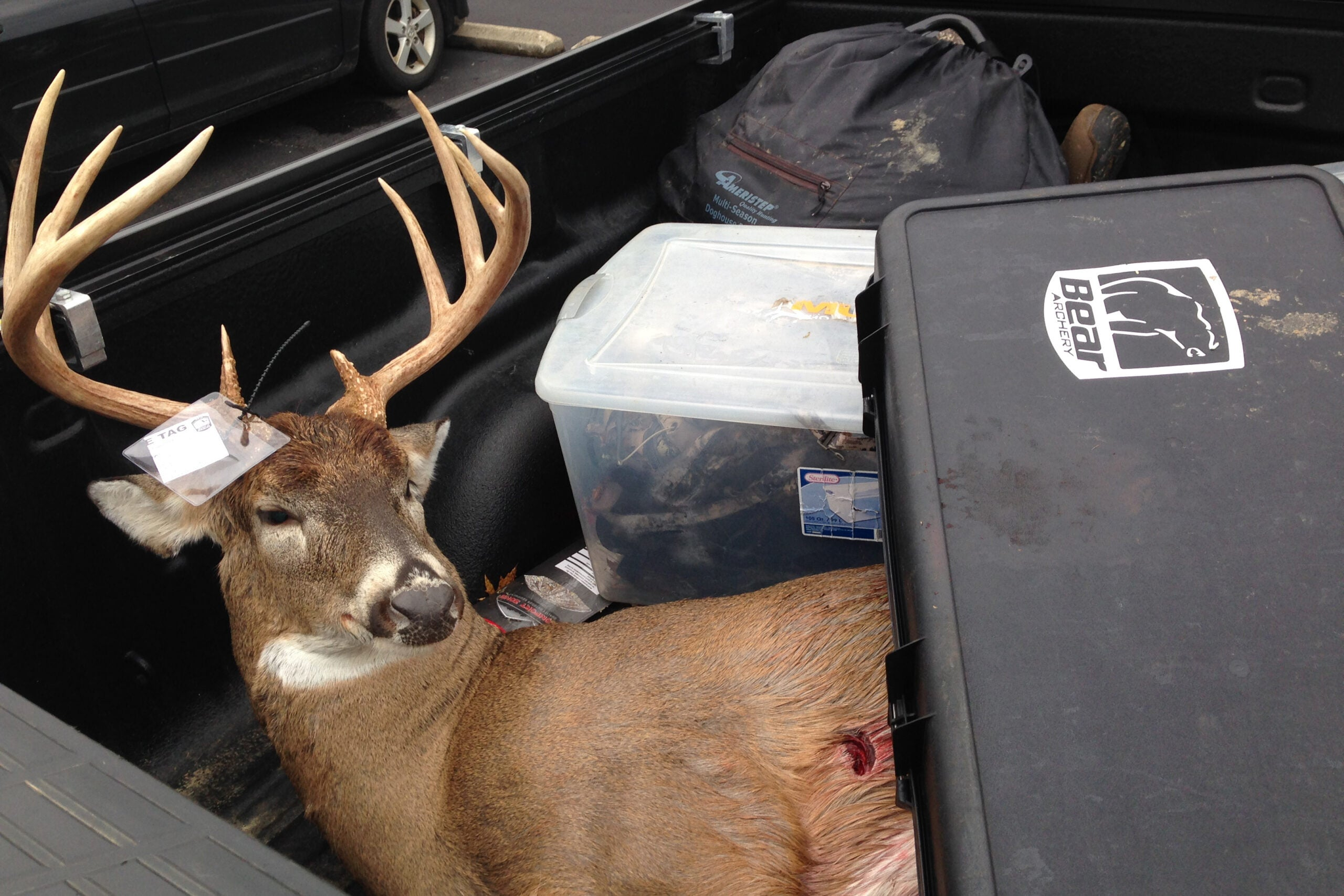 5 Tips for Planning a Big Buck Trip on a Budget