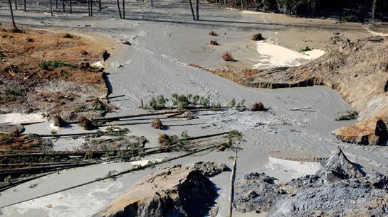 Damage to Washington's Stillaguamish River Could Last for Decades After Mudslide