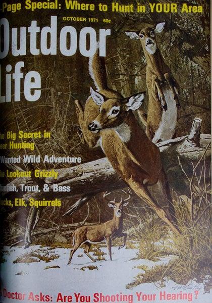 httpswww.outdoorlife.comsitesoutdoorlife.comfilesimport2013images2011071971_Oct_0.jpg